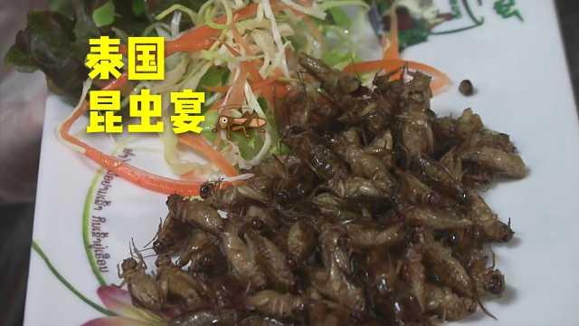 黑暗料理!泰国昆虫宴蟋蟀蚱蜢齐聚