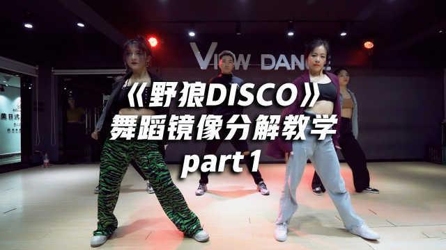 《野狼DISCO》舞蹈教学part1