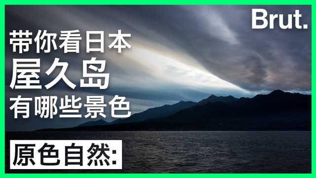 带你看日本屋久岛有哪些景色