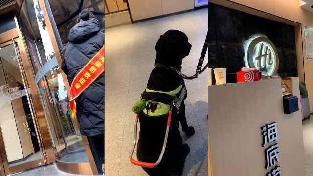 盲人带导盲犬进海底捞,两度被拒