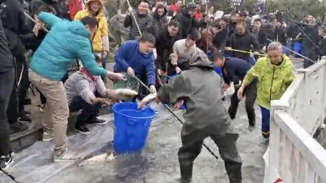 高校师生抓2千斤鱼迎新年,做全鱼宴