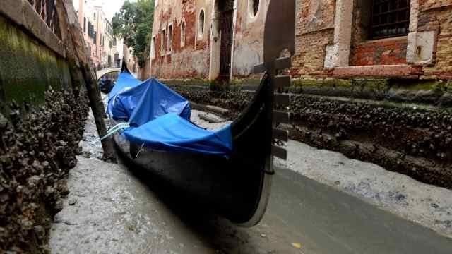 运河没水了!威尼斯洪涝后又迎干旱