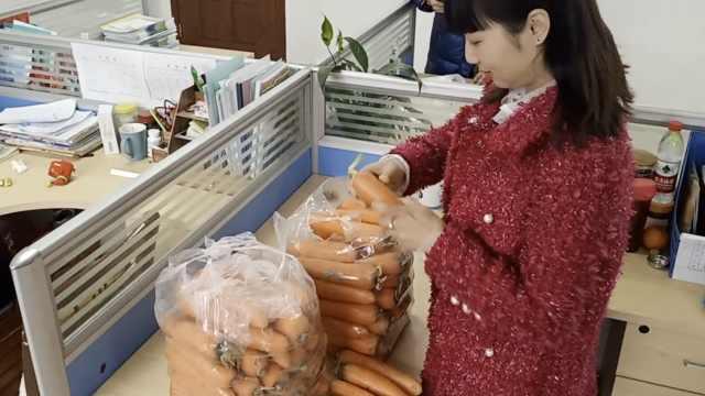 老师用胡萝卜当寒假作业,创意十足