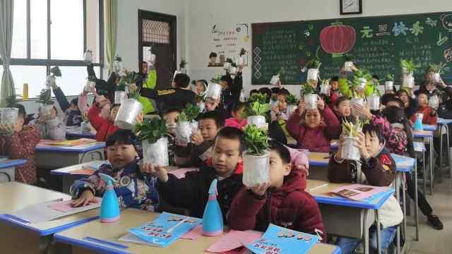小学生寒假作业养盆栽:写观察日记