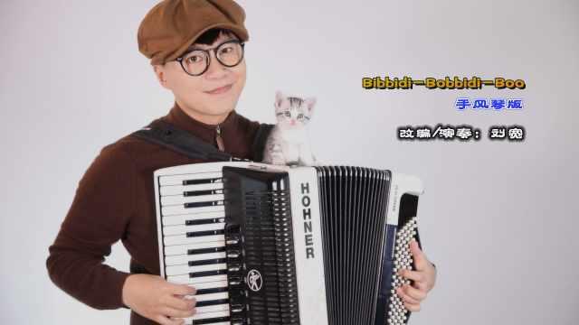 《Bibbidi-Bobbidi-Boo》手风琴版