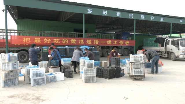 已出发!村民捐3万斤黄瓜支援武汉