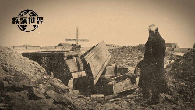 110年前东北鼠疫是如何被消灭的?