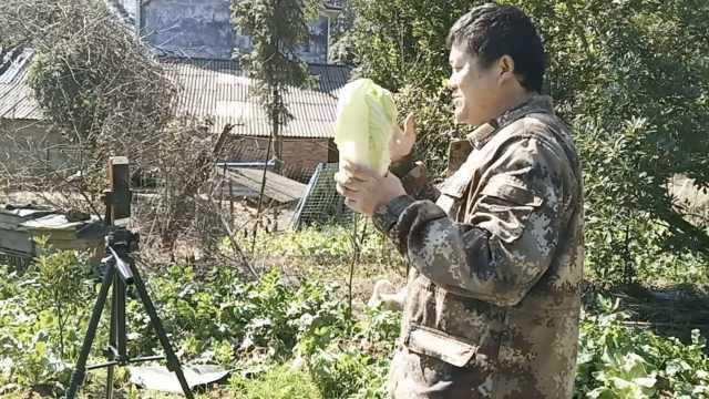 疫情期顾客不出门:农户直播卖蔬菜