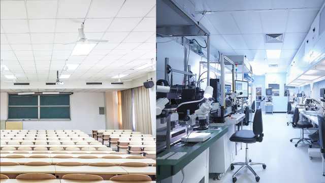 《科学》:新冠肺炎影响全球科研界