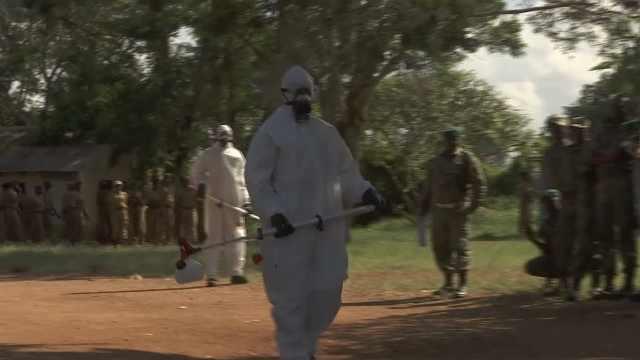 蝗灾严重!肯尼亚出动军队对付蝗虫