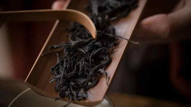 高山茶园里的红茶,还有少见郁金香