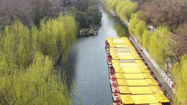 【舜网云踏青(五)】护城河:柳色如烟碧波清流,潇洒似江南