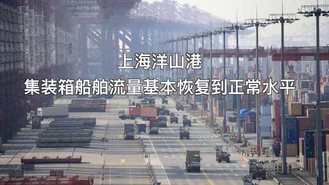 上海洋山港集装箱船舶流量基本恢复到疫情前正常水平