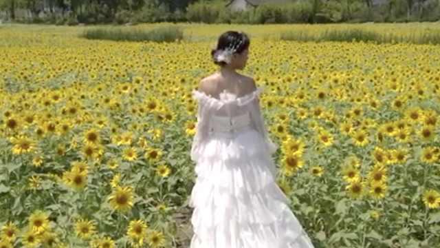 婚纱摄影店因疫情遭受重创:拍摄量减半,多人退单