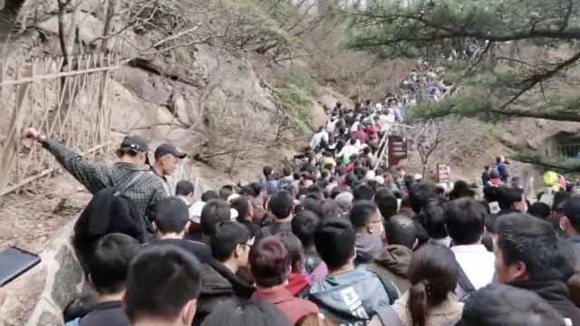 黄山景区清明游客达2万停止售票,游客:2小时走了不到1公里