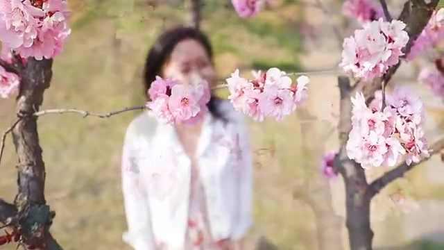 青岛西海岸新区:漫步春光里,陌上花正开