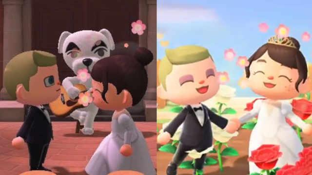 因新冠疫情取消婚礼,美国夫妇在动森游戏上完婚,摘花送来宾