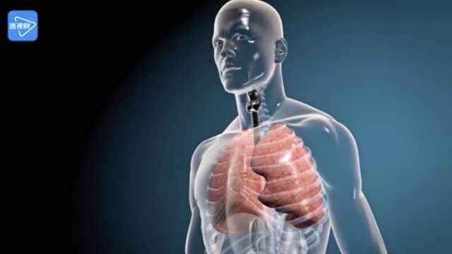 第8节:胸膜疾病的诊断要点