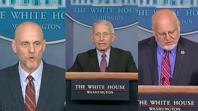 美国抗疫三巨头均自我隔离,白宫一周内3人确诊陷入疫情危机