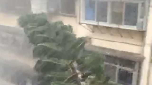 福州连发冰雹暴雨雷电三道预警,网友称堪比台风登陆
