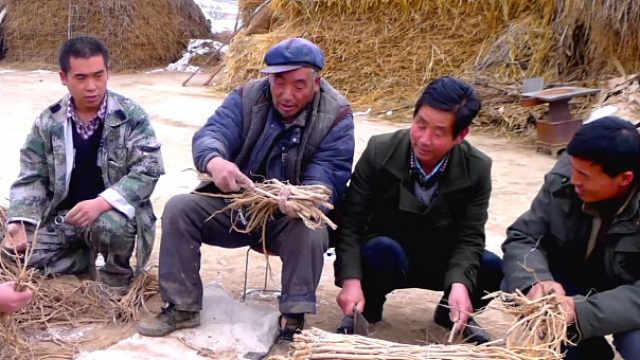 国际人士谈中国减贫经验如何助力全球可持续发展目标实现