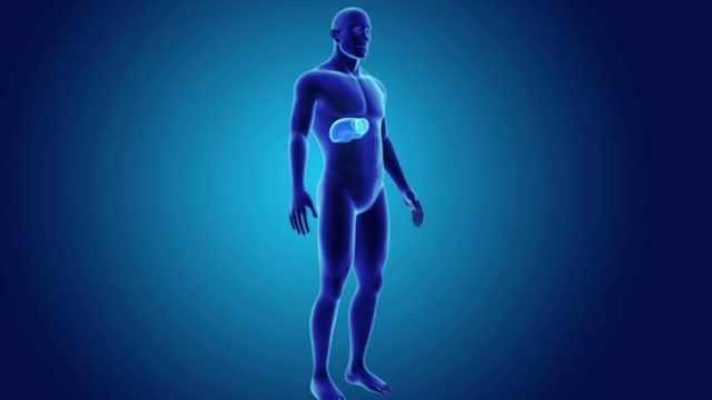 第9节:胆道出血的诊断要点