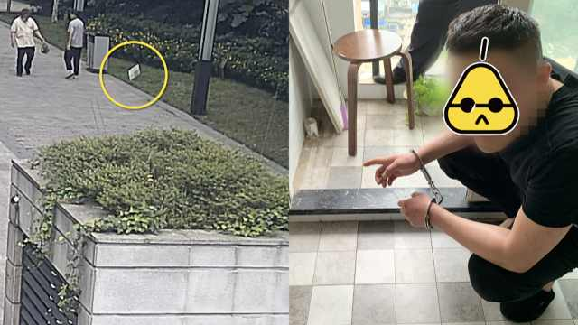 被批捕了!重庆男子清梦被扰,21楼扔3块瓷砖砸伤2人