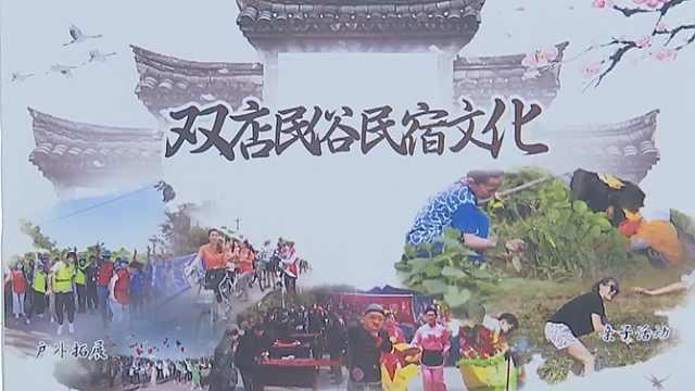 荆州:发展民宿经济,助推乡村振兴
