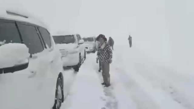 新疆多地大雪最深积雪达30厘米,独库公路通车半月又关停