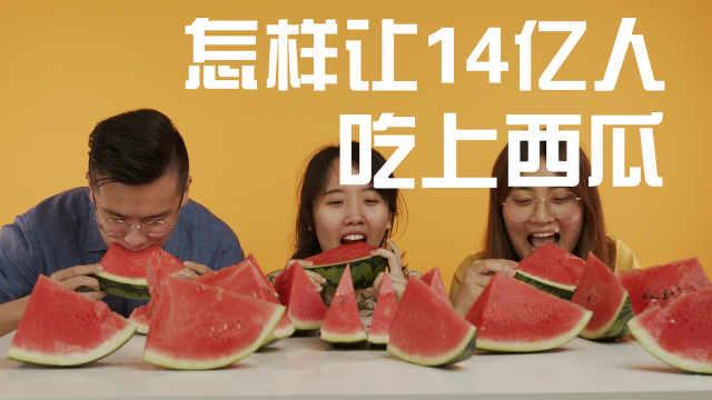 怎样让14亿中国人吃上西瓜?