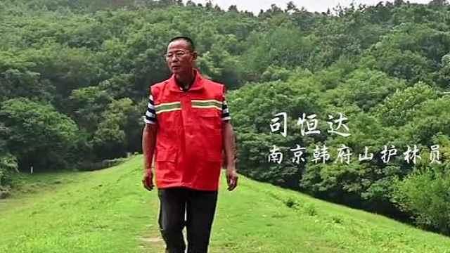 城市护林员老司:斗火斗水14年,守护南京一方山林