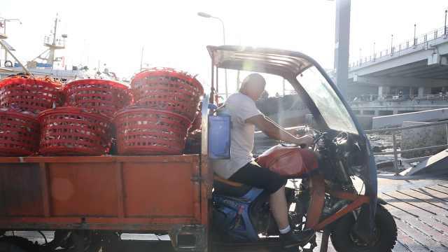 没有名字的三轮车夫:一筐梭子蟹挣3块,每年就忙这三月