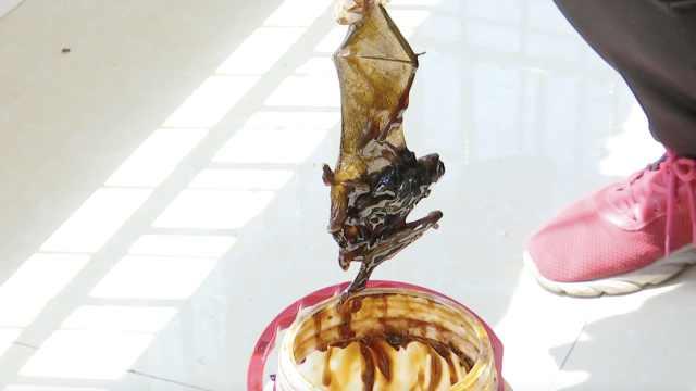 知名蚝油桶内发现完整蝙蝠,厂家人员:生产时层层过滤不可能