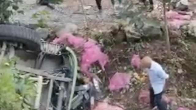 河南商城通报8人因捡蒜瓣丧生经过:车主离开后村民才去捡