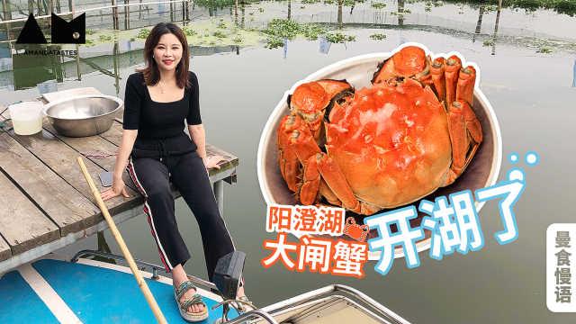 【曼食慢语】在阳澄湖承包一天蟹塘是什么体验?超满足