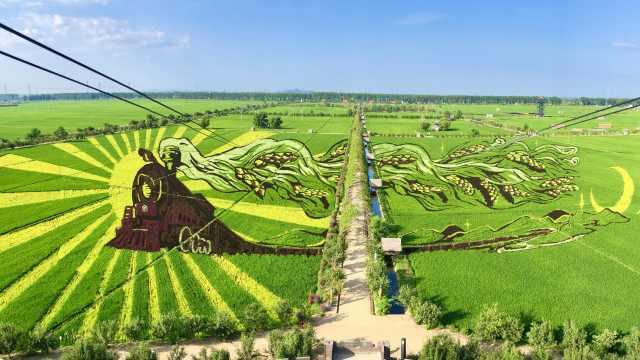 巨幅稻田画!《我和我的家乡》电影取景地变成打卡胜地