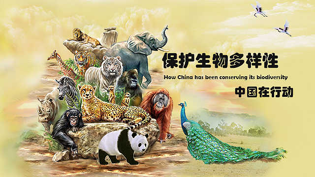 保护生物多样性,中国在行动
