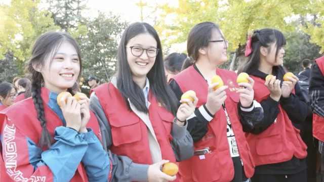 柿柿如意!高校122棵柿子树产上万斤柿子,师生采摘免费吃
