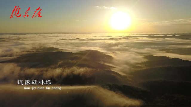 【庆阳人说庆阳】去子午岭看风景吧