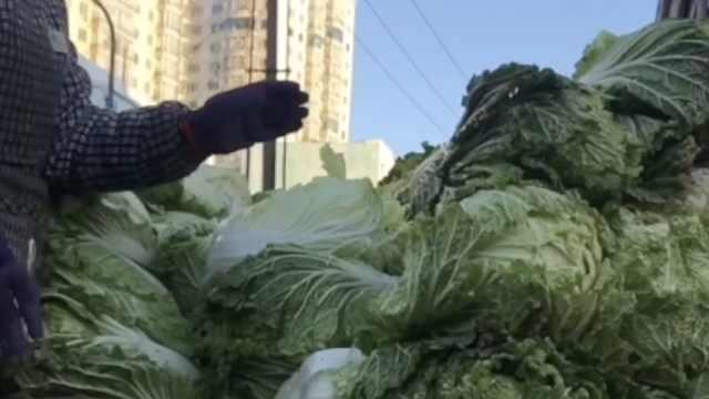 冬天最爱囤菜的省份有哪些?打包式东北三省首当其冲!