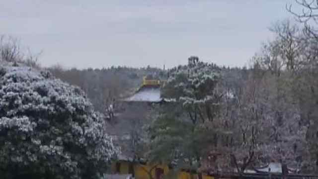 苏州昨晚的初雪,都在这里了!!