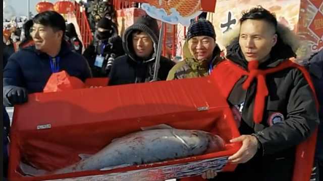 再创历史新高!查干湖冬捕头鱼拍得2999999元天价
