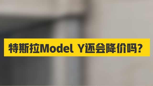 现在买Model Y,提前当韭菜?