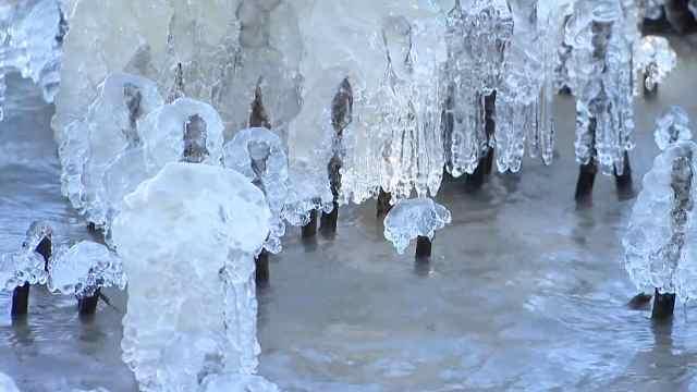 寒潮下的苏州:冰冰的、美美的哟!
