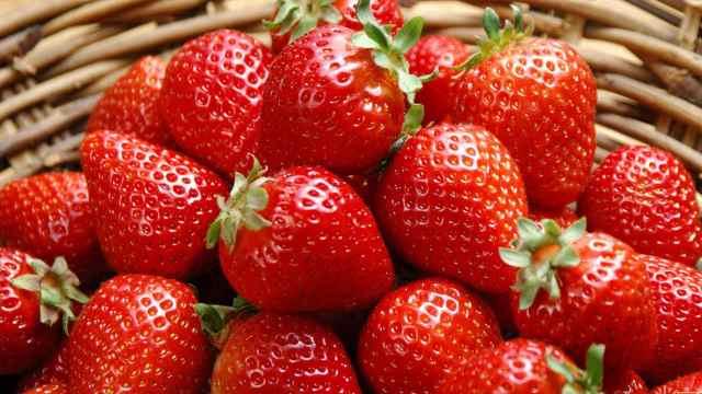 冬草莓上市只要十几一斤,终于要实现草莓自由了