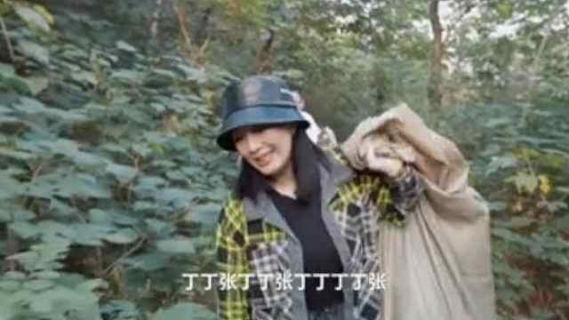 《送一百位女孩回家》:钟丽缇带丁丁张在香山捡垃圾