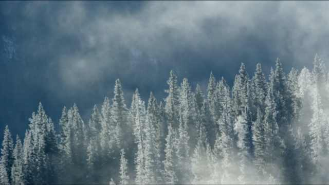 我在新疆等你   Let's go ,探享冬日极致时光