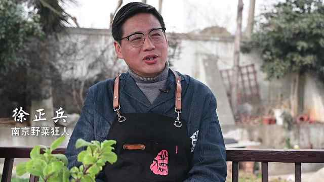 """南京""""野菜狂人""""在汤山种下100多种野菜"""