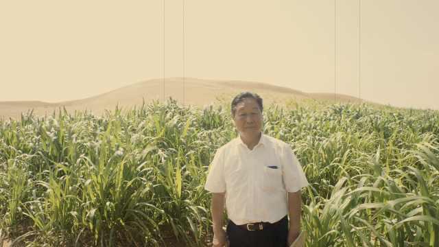 《山海情》种菇致富现实版:中国