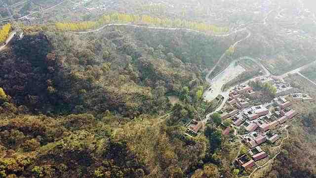 济南偏僻山村藏着千年古栗园,树龄千年以上的就有1百多棵